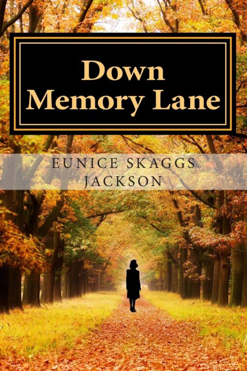 Down Memory Lane  Cover
